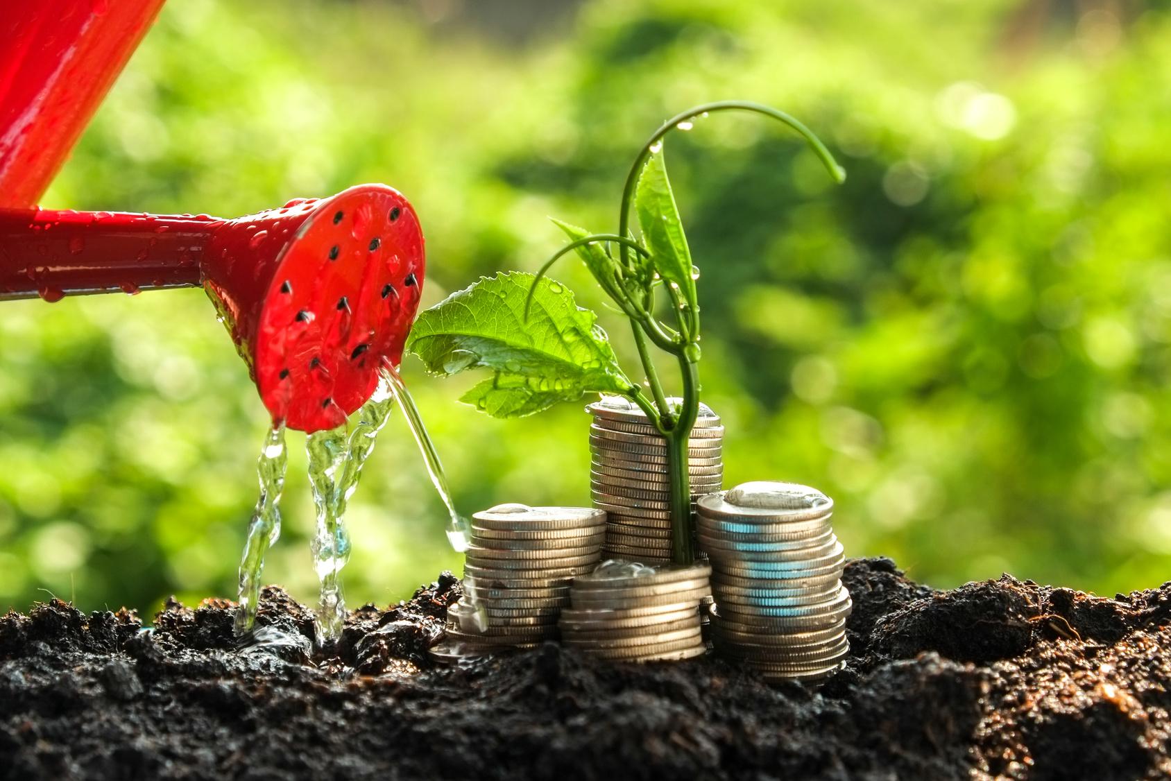 Fonds: rekord für nachhaltige geldanlagen in deutschland 15.02.2017